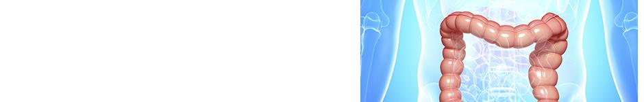 最新の大腸3D-CT検査
